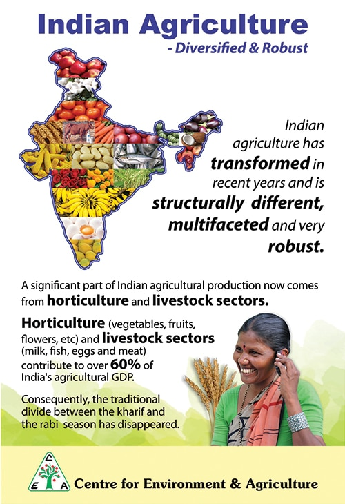 agriculture in india diversification